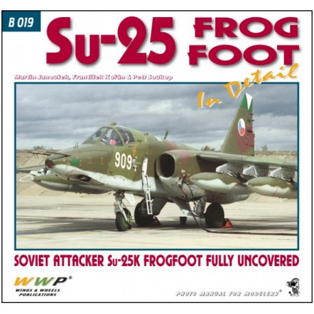 Su-25 Frogfoot in detail