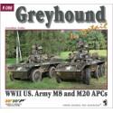 Greyhound in Detail
